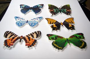 Сувениры: бабочки